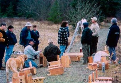 volunteers building nest boxes